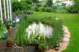 Садовый декоративный пруд