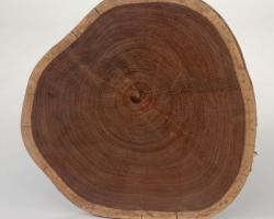 Древесина венге – ценный материал для дорогой отделки