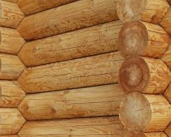 Дачные дома из оцилиндрованного бревна: отличный вариант комфортного и красивого загородного жилья