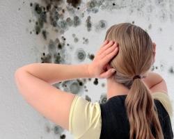Способы борьбы с повышенной влажностью стен