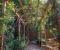 Арки и сооружения арочного типа в дизайне вашего сада