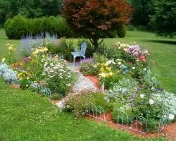 Небольшой участок для выращивания цветов на срезку и для засушивания