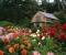 Сад, привлекательный круглый год