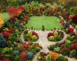 Светлота и насыщенность сада