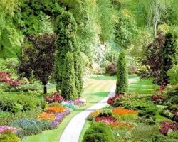 Планировка сада на участке большой площади