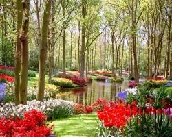 Фрагменты природного ландшафта в саду
