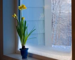 Пластиковым окнам морозы не страшны