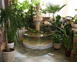 Красота и гармония домашних водопадов