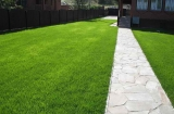 Газоны – зеленые ковры садов