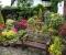 Миксбордер – жемчужина вашего сада