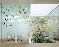 Эстетичность и функциональность стеклянных конструкций