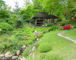 Сад природного стиля