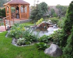 Подбор растений для ландшафтного дизайна и озеленения