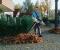 Садовые пылесосы. Продолжение 2