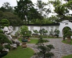 Теория китайского сада