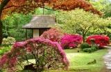 Секреты оформления сада в китайском стиле. Продолжение 2
