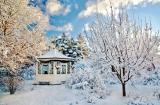 Снежные красоты. Продолжение