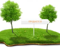 Дача от А до Я: покупка земельного участка