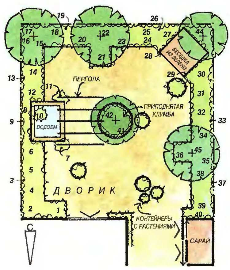 Схематический план сада (10