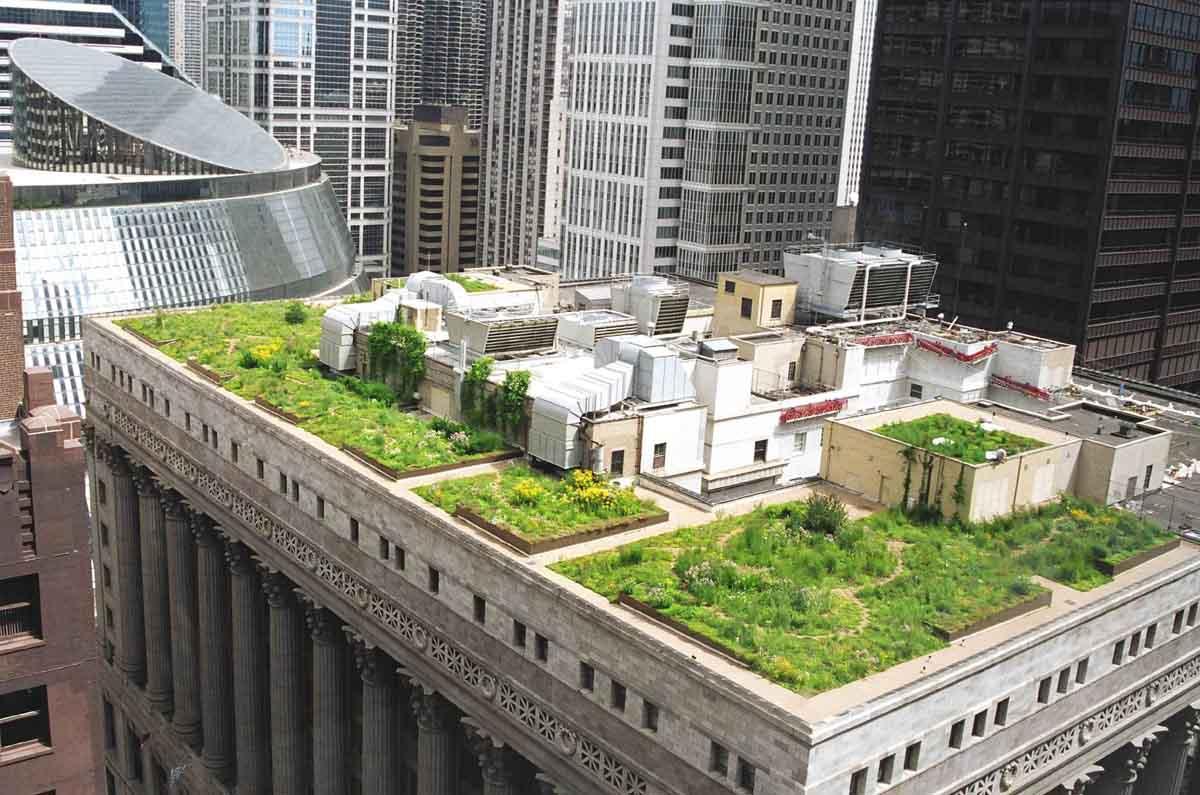 Озеленение современных городов