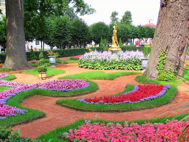 Вертикальное озеленение в саду и в ландшафтном дизайне