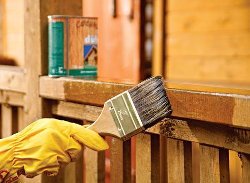 Лечение древесины от болезней и защита от паразитов