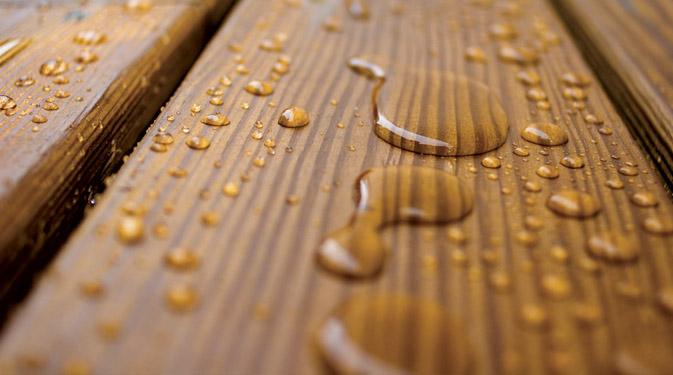 Лечение древесины от болезней и защита от паразитов. Продолжене
