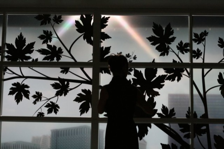 Пластиковые сенсорные окна