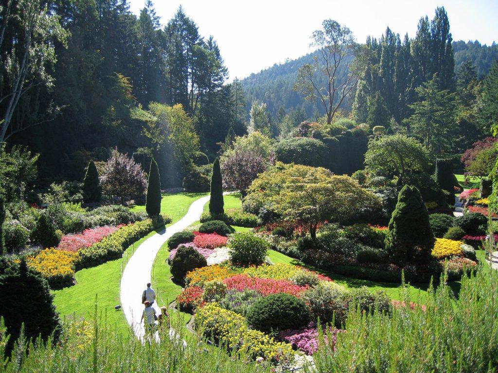 Английский сад Вал Кристман