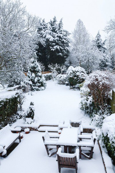 Снежные красоты