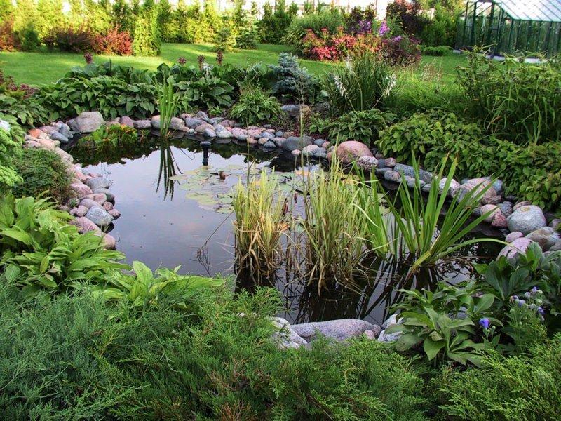 Водоем - украшение вашего сада
