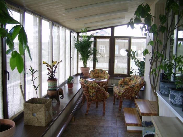 Зимний сад на балконе: мечта или реальность?